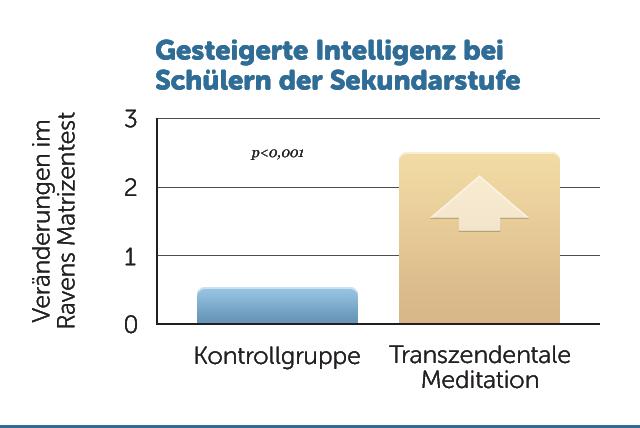 E4-Gesteigerte-Intelligenz