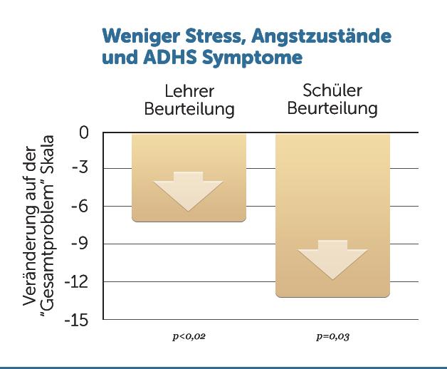 E40-Stress-ADHS-Symptome