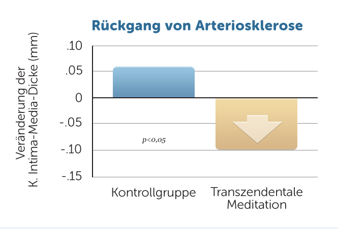 H31-Rueckgang-Atherosklerose