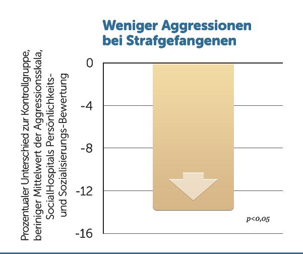 R14-Weniger-Aggressionen-Gefaengnis