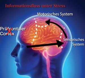 flow-under-stress